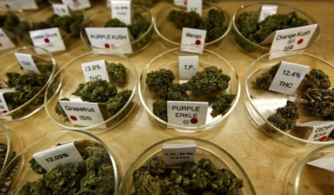 ADPD says cannabis should be purchased legally